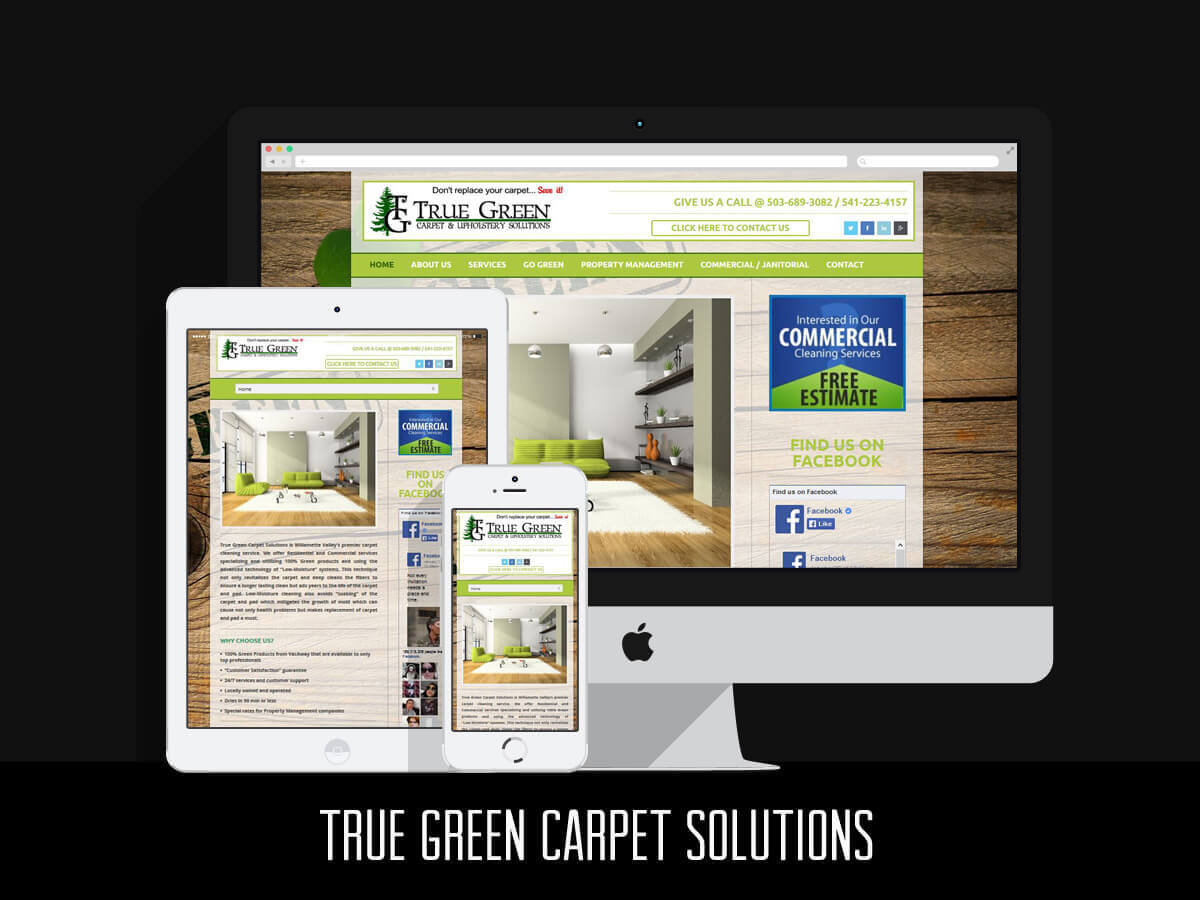 Web Design - True Green Carpet Solutions